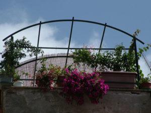 Terrazzo con fiori